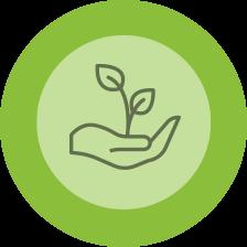 L'impact environnemental de la production agricole